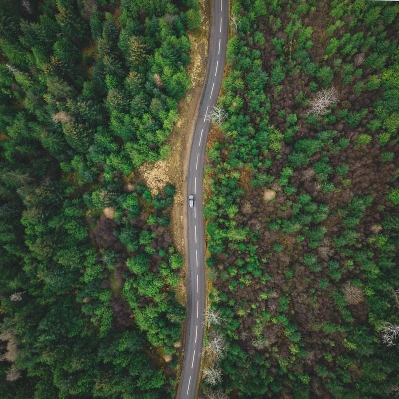 Road_Blog article